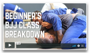 Bonus 3 - Class Breakdown
