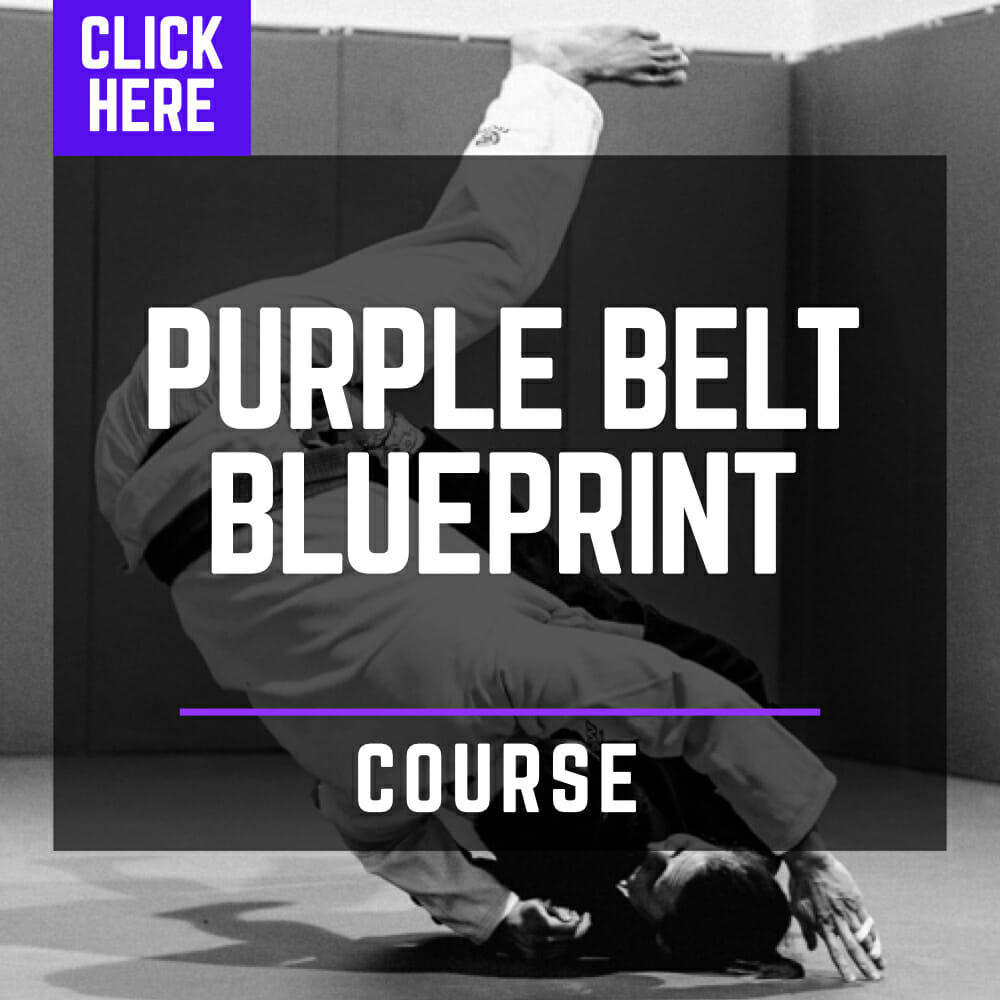 Purple Belt Blueprint